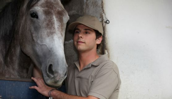 Horses Have An Impact On Troubled Teens