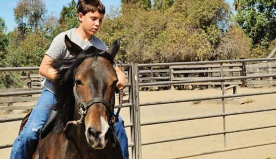 A Boys Ranch Can Be Like A Boot Camp For Teens
