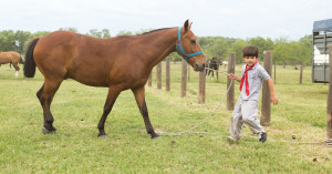 Activities that Help Your Teen at a Boys' Ranch